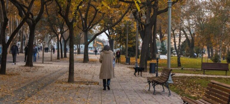 Gradski park koji ćete prvi posetiti nakon selidbe Niš