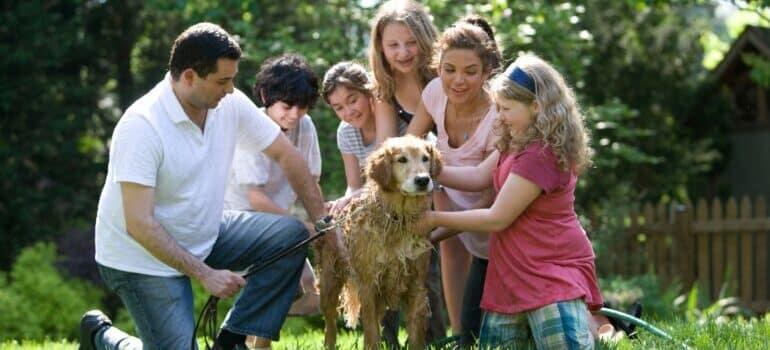 Porodica sa psom