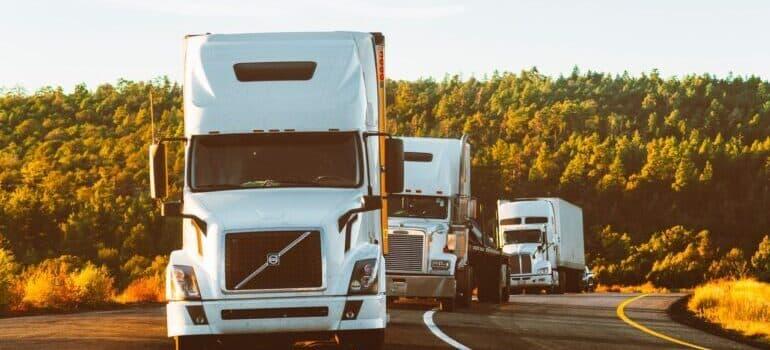 Kolona kamiona za selidbu na delu puta kroz šumu